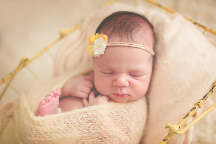 Newborn sessions are a very special time to capture all those tiny newborn details that we love so much i have a studio in carina but i can also come to